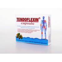 Tendoflexin capsule XXL - 1 cutie